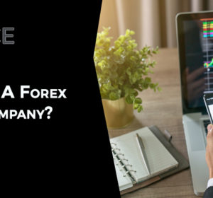 How to start a Forex Brokerage Company